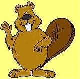 boris beaver