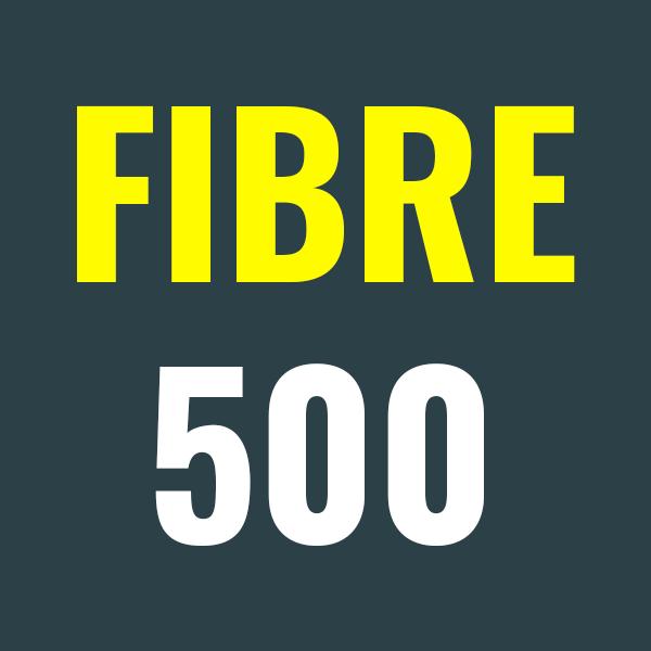 Thumbnail of Fibre 500